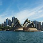 Opera House - Sydney Harbour by Alison Murphy