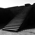 1995 - nalanda, the steps to the library by moyo