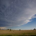 Cushnie Clouds by kurrawinya