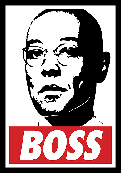 "Breaking Bad ""Boss"" by Megatrip"