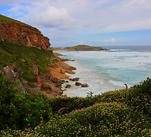 Robberg Nature Reserve by Cameron B