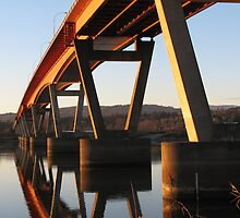 Mission bridge over the Fraser River by cielleigh