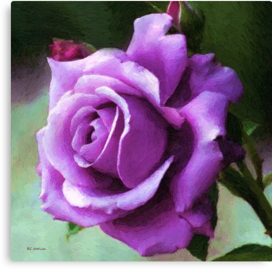 Lavender Lady by RC deWinter