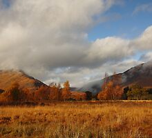 Cona Glen in Autumn. by John Cameron