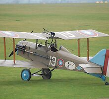 Royal Aircraft Factory SE5a by Tony Reed