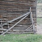 forgotten gate by cielleigh