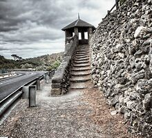 Tower Lookout by Ginter