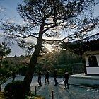 Japan 07 by Adrian Rachele