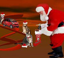 <º))))>< CATS MEET SANTA <º))))><  by ╰⊰✿ℒᵒᶹᵉ Bonita✿⊱╮ Lalonde✿⊱╮