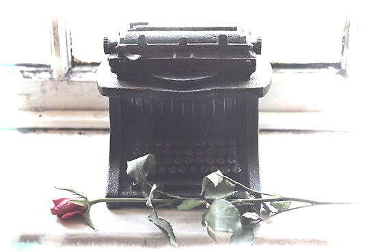 Qwerty & The Rose by guymorris