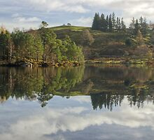 Tarn Hows....A Day To Remember by VoluntaryRanger