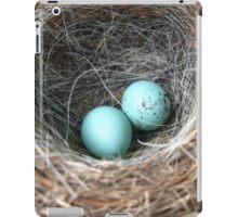 Blue Eggs iPad Case/Skin