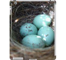 Blue Eggs in Nest iPad Case/Skin