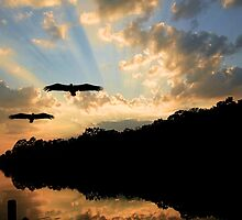 Sunset Along The Waccamaw River by Kathy Baccari