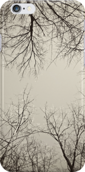 Winter Canopy iPhone Case by Bethany Helzer