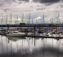 The Marina at South Queensferry by Tom Gomez