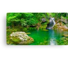 Beatiful waterfall falling into peaceful river Canvas Print