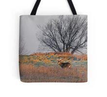Painted Hill Tote Bag