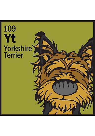 Yorkshire Terrier - The Dog Table by Angry Squirrel Studio