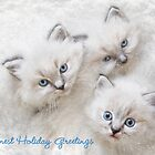 Warmest Holiday Greetings by Lori Deiter