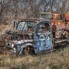 Junkyard Blues by wiscbackroadz