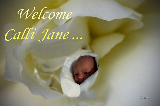 Welcome, Calli Jane! by Rosemary Sobiera