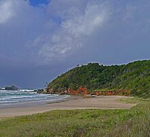 Secluded Beach, N.S.W. Australia by Margaret  Hyde