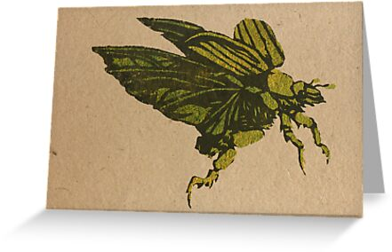 Christmas beetle 01 by Richard Morden