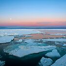 Fram Strait Ice Floes by Algot Kristoffer Peterson