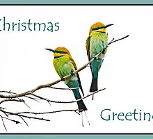 Bee-eater Christmas greetings by Jennie  Stock