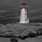 Peggy's Cove Lighthouse by Donald  Stewart