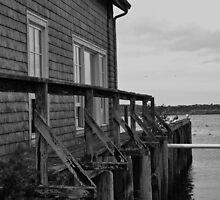 Mossy Pier by Upperleft Studios