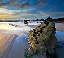 Fistral Beach by Thomas Harvey