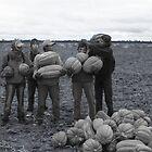 The Squashpickers by cloudheadART