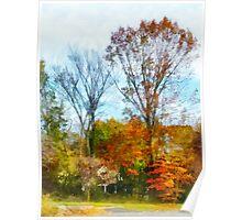 Tall Autumn Trees Poster