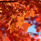 Orange Thank You by AbigailJoy