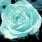 blue rose flower i pad case by jenny meehan