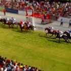 tiny horse race by tinncity