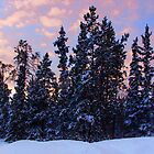 Winter Sunset by Yukondick