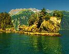 A Small Island by Yukondick