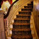 The Up Stairway by Barbara  Brown