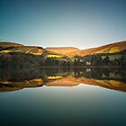 Reflections of Autumn by JzaPhotography