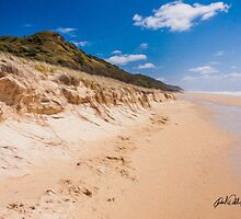 Beach Landscape - Fraser Island QLD Australia by Paul Welding