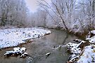 Little Muncy Creek Snowstorm by Gene Walls