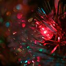 Light on a Christmas Tree by lindsycarranza