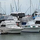 Various Boats & Masts, Marina 'Cairns' on a wet day. Winter. by Rita Blom