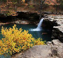 Falling Water Falls by NatureGreeting Cards ©ccwri