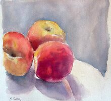 Peaches by Barbara Gray