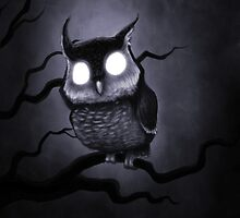 Whoo? by evolvingeye