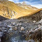 Alpine Creek by Walter Quirtmair